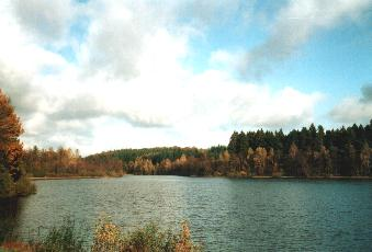 Lake in the Ardennes